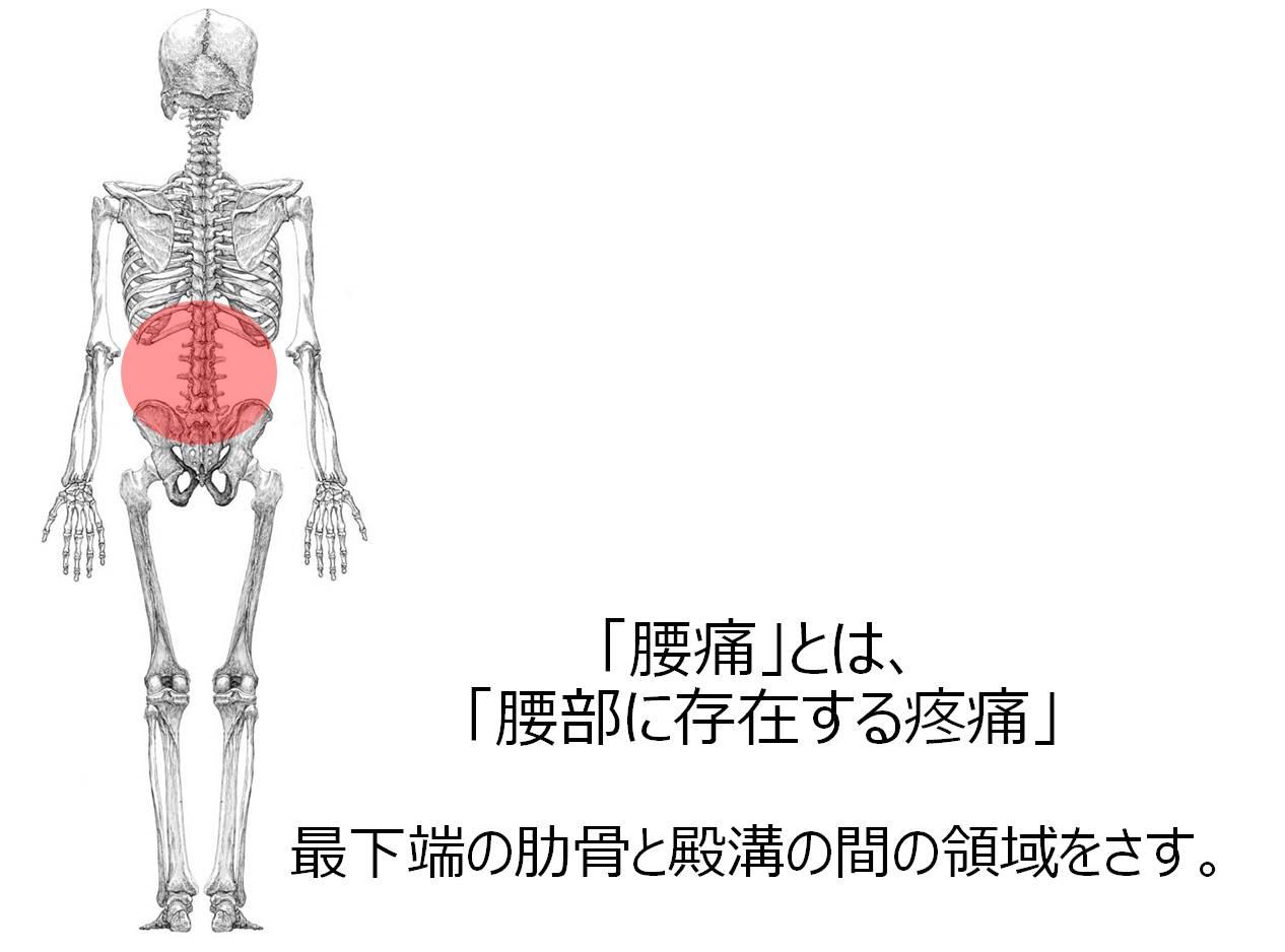 腰痛 定義