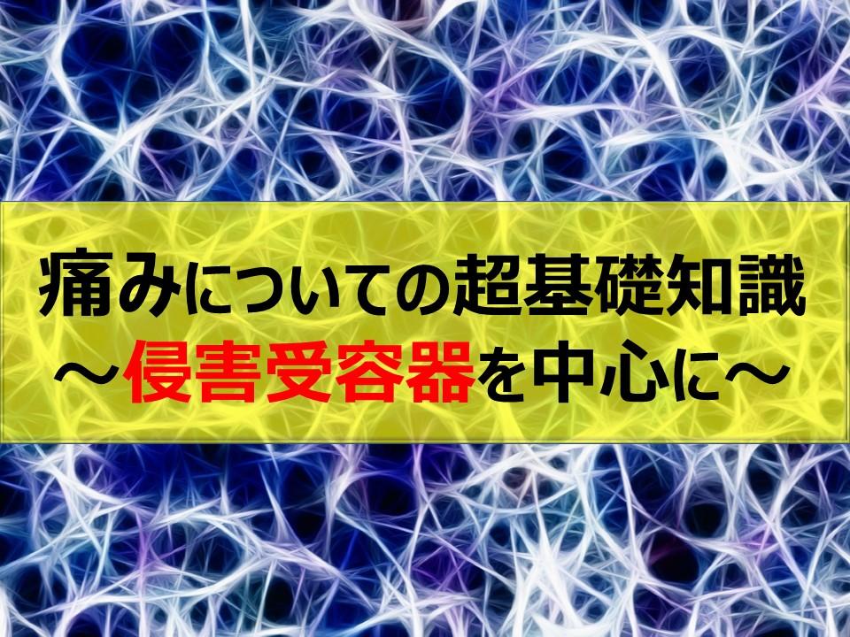 痛みについての超基礎知識~侵害受容器を中心に~
