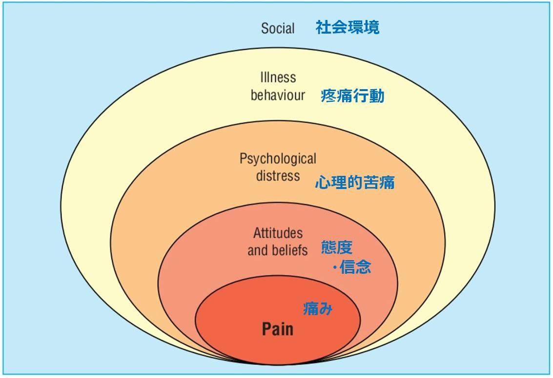 腰痛 BPSモデル 心理社会的危険因子
