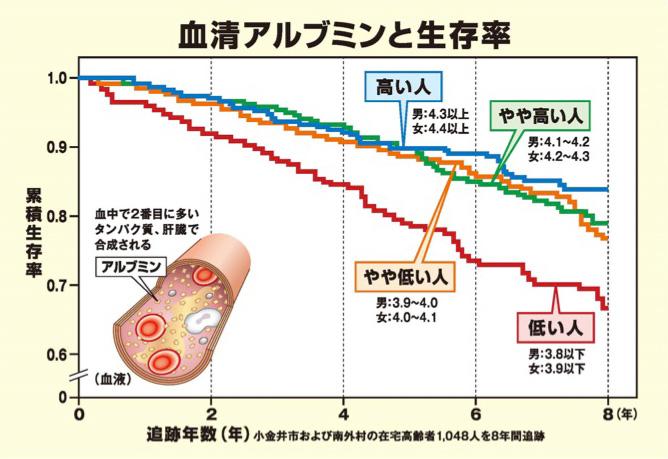 アルブミン 生存率