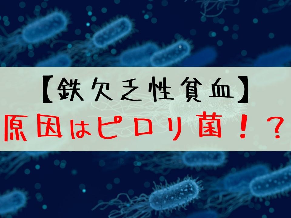 【鉄欠乏性貧血】原因はピロリ菌感染かもしれない!?