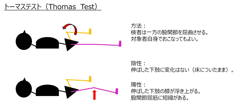 トーマステスト