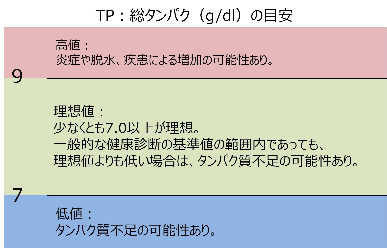 血液検査 TP 総タンパク 基準値