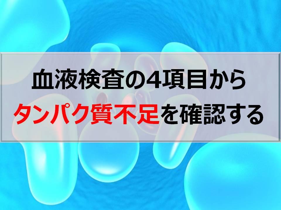 血液検査の4項目からタンパク質の不足を確認しよう