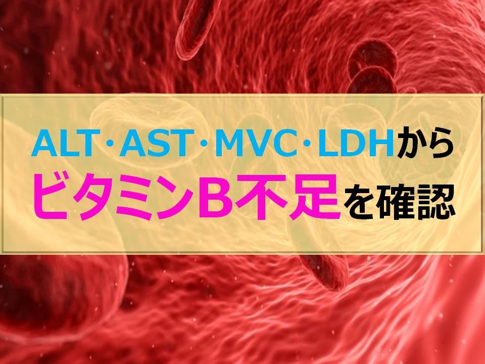 ALT・AST・MCV・LDHからビタミンB不足を確認しよう