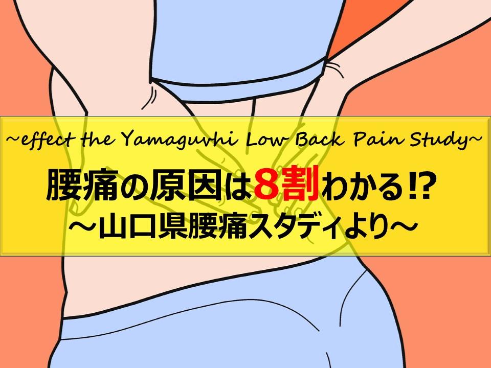 山口県腰痛スタディ~腰痛の原因の8割はわかる!?~