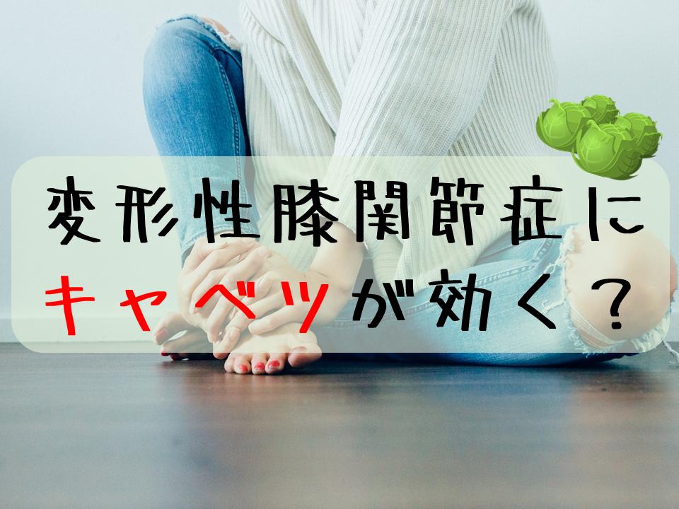 キャベツは変形性膝関節症の痛み軽減に役立つ!?